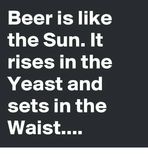 Beer, Memes, and 🤖: Beer is like  the Sun. It  rises in the  Yeast and  sets in the  Waist....