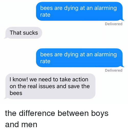 bees are dying at an alarming rate delivered that sucks 2762766 bees are dying at an alarming rate delivered that sucks bees are