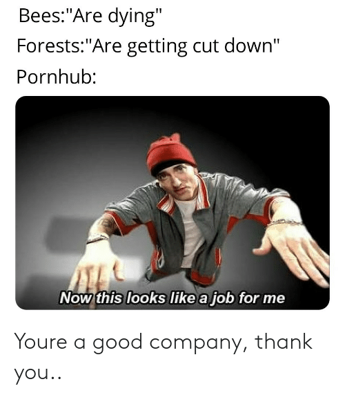 "Pornhub, Thank You, and Good: Bees:""Are dying""  Forests:""Are getting cut down'""  Pornhub:  Now this looks like a job for me Youre a good company, thank you.."