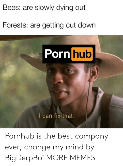 Dank, Memes, and Porn Hub: Bees: are slowly dying out  Forests: are getting cut down  Porn hub  I can fix that Pornhub is the best company ever, change my mind by BigDerpBoi MORE MEMES