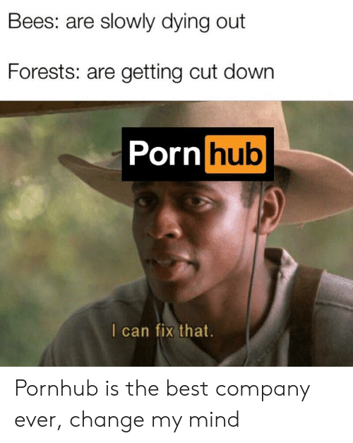 Porn Hub, Pornhub, and Best: Bees: are slowly dying out  Forests: are getting cut down  Porn hub  I can fix that Pornhub is the best company ever, change my mind