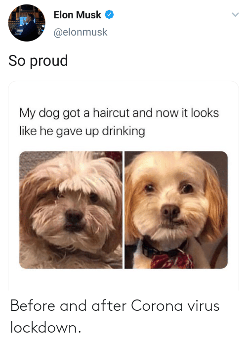 Blackpeopletwitter, Funny, and Corona: Before and after Corona virus lockdown.