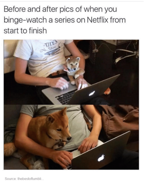 Netflix, Watch, and Humans of Tumblr: Before and after pics of when you  binge-watch a series on Netflix from  start to finish  Source: thebestoftumbli