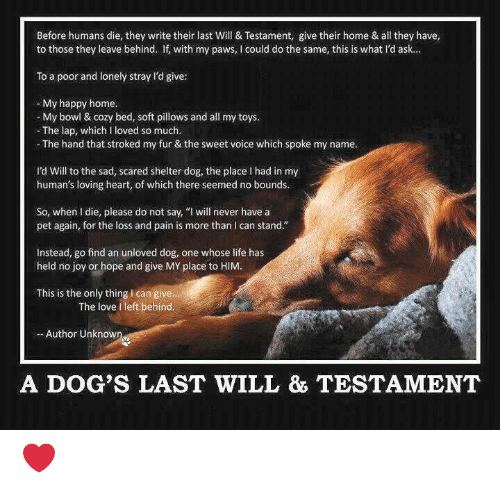 Before Humans Die They Write Their Last Will & Testament