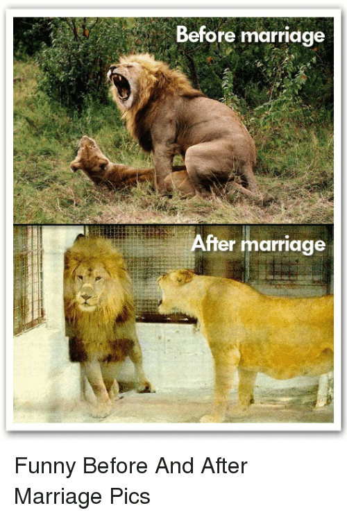 Funny Marriage And Before And After Marriage Before Marriage After Marriage Funny Before