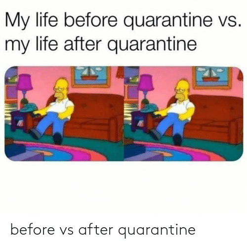 Before vs After Quarantine | Reddit Meme on ME.ME