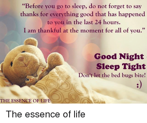 Dont Let The Bed Bugs Bite THE ESSENCE OF LIFE Essence Of Life Go To Sleep And Memes Before You