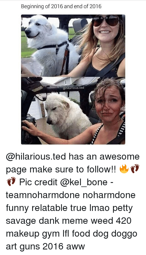Aww, Bones, and Dank: Beginning of 2016 and end of 2016  @hilarious. ted @hilarious.ted has an awesome page make sure to follow!! 🔥👣👣 Pic credit @kel_bone - teamnoharmdone noharmdone funny relatable true lmao petty savage dank meme weed 420 makeup gym lfl food dog doggo art guns 2016 aww