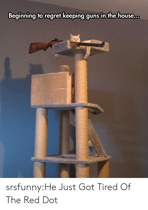 Guns, Regret, and Tumblr: Beginning to regret keeping guns in the house srsfunny:He Just Got Tired Of The Red Dot