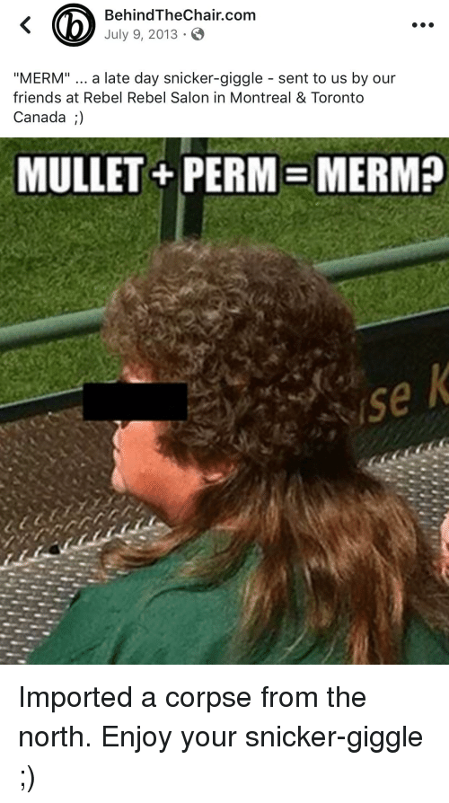 behindthechair com july 9 2013 merm a late day snicker giggle sent 28397358 ✅ 25 best memes about mullet perm mullet perm memes