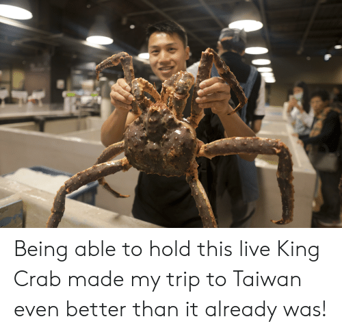 Being Able to Hold This Live King Crab Made My Trip to