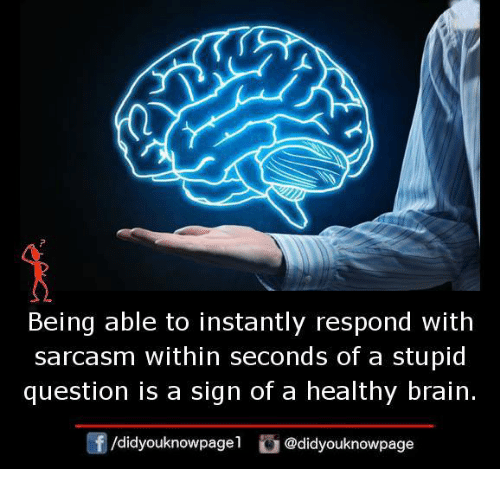 Memes, Brain, and Sarcasm: Being able to instantly respond with  sarcasm within seconds of a stupid  question is a sign of a healthy brain  団/d.dyouknowpage1 @didyouknowpage