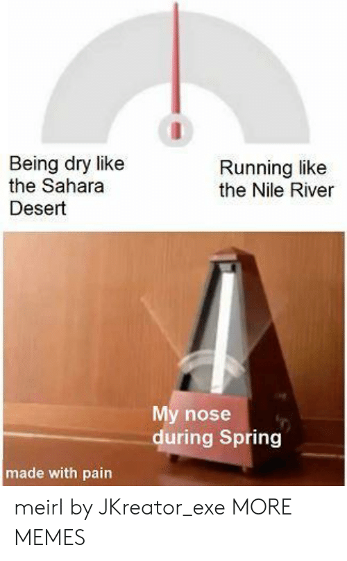 Dank, Memes, and Target: Being dry like  the Sahara  Running like  the Nile River  Desert  My nose  during Spring  made with pain meirl by JKreator_exe MORE MEMES