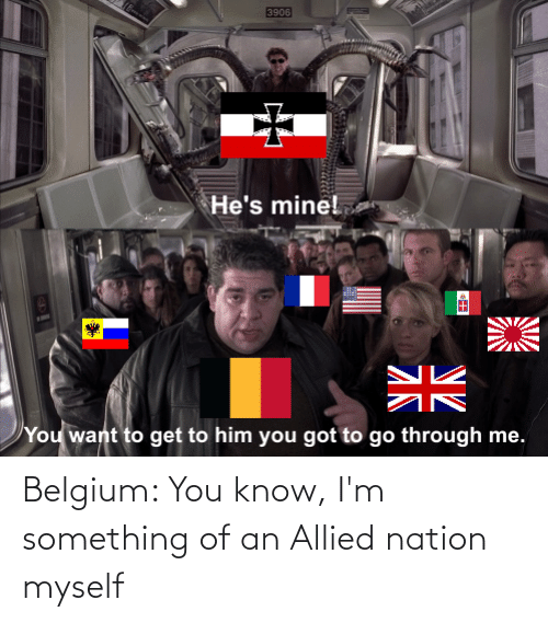 Belgium, History, and You: Belgium: You know, I'm something of an Allied nation myself