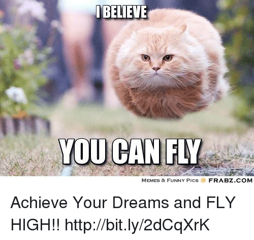 Memes, 🤖, and Fly: BELIEVE  YOU CAN FW  MEMES & FUNNY PICs  FRABZ COM Achieve Your Dreams and FLY HIGH!!  http://bit.ly/2dCqXrK