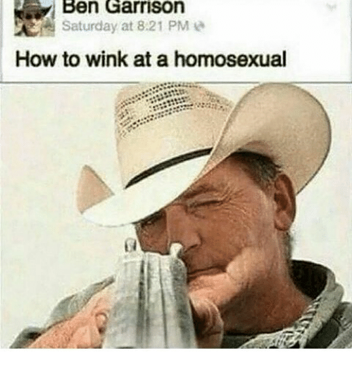 Memes, How To, and 🤖: Ben Garrison  Saturday at 8 21 PM  How to wink at a homosexual