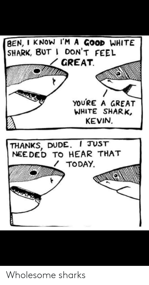 Dude, Shark, and Good: BEN, I KNOW IM A GOOD WHITE  SHARK, BUT I DON'T FEEL  GREAT  YOURE A GREAT  WHITE SHARK,  KEVIN  THANKS, DUDE. I JUST  NEEDED TO HEAR THAT  TODAY. Wholesome sharks