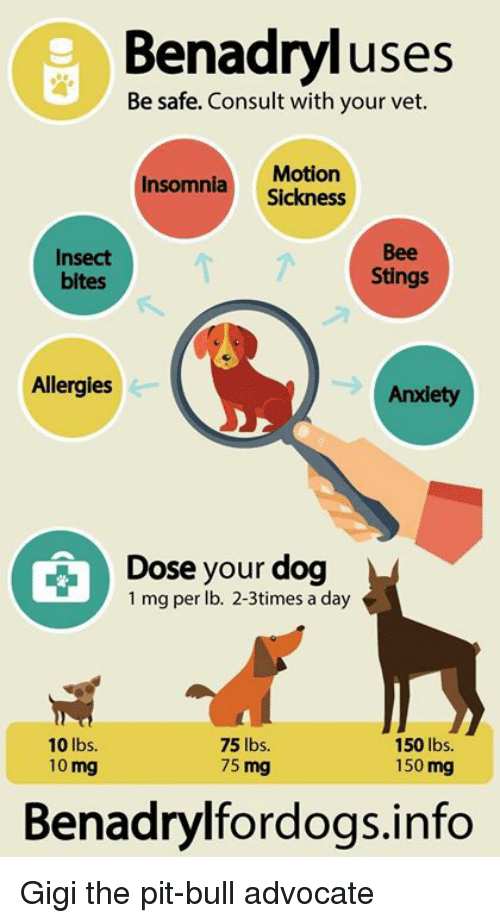 Benadryl, Memes, and Sting: Benadryl uses Be safe. Consult with your vet