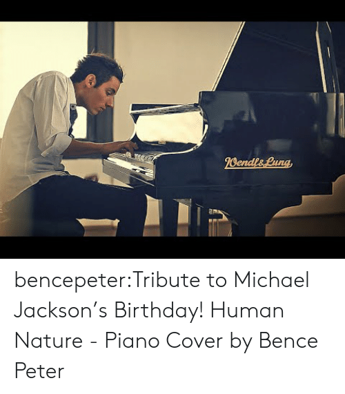 Birthday, Michael Jackson, and Tumblr: bencepeter:Tribute to Michael Jackson's Birthday! Human Nature - Piano Cover by Bence Peter
