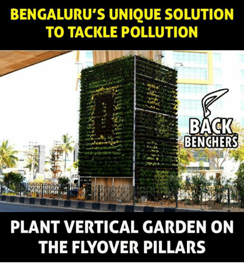 Memes, 🤖, and Pollution: BENGALURU'S UNIQUE SOLUTION  TO TACKLE POLLUTION  BENCHERS  PLANT VERTICAL GARDEN ON  THE FLYOVER PILLARS