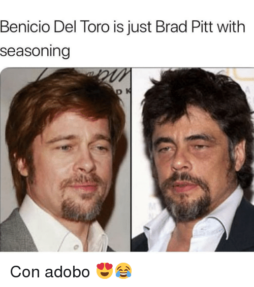 Benicio Del Toro Is Just Brad Pitt With Seasoning Con Adobo Benicio Del Toro Meme On Me Me