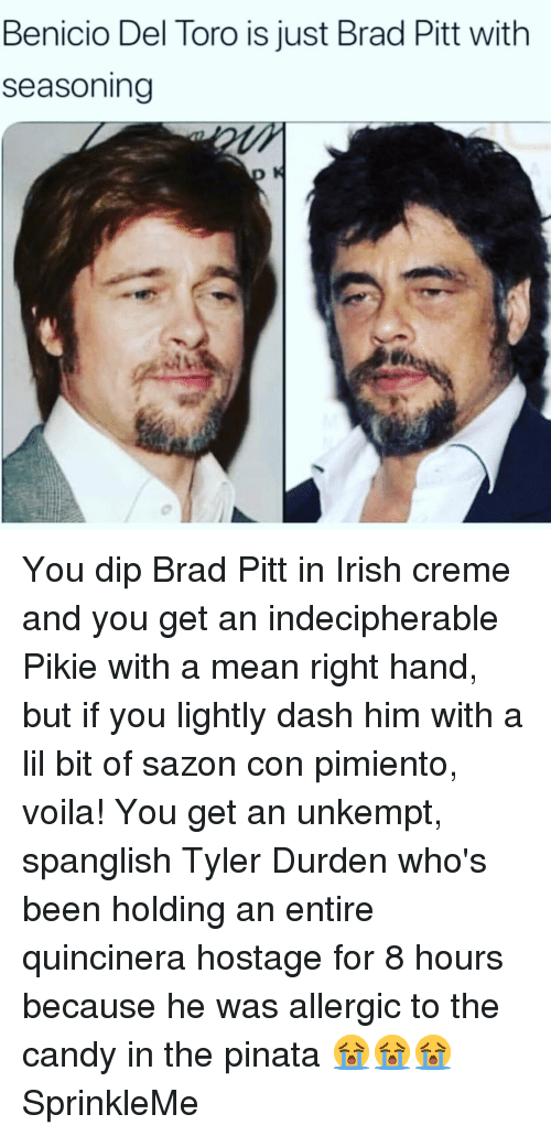 Benicio Del Toro, Brad Pitt, and Candy: Benicio Del Toro is just Brad Pitt with  seasoning You dip Brad Pitt in Irish creme and you get an indecipherable Pikie with a mean right hand, but if you lightly dash him with a lil bit of sazon con pimiento, voila! You get an unkempt, spanglish Tyler Durden who's been holding an entire quincinera hostage for 8 hours because he was allergic to the candy in the pinata 😭😭😭 SprinkleMe