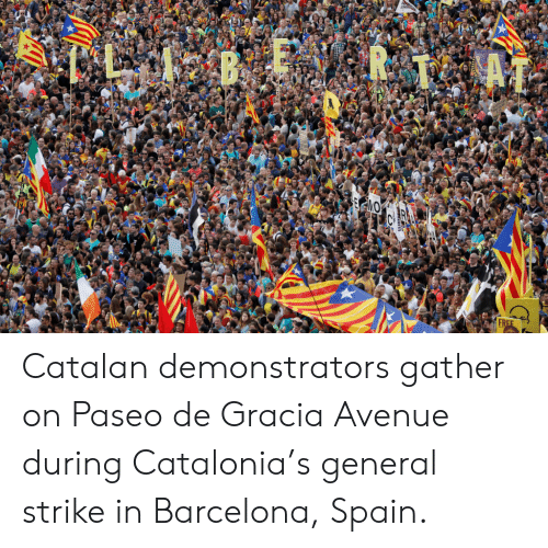 Barcelona, Avenue, and Free: BER1  FREE Catalan demonstrators gather on Paseo de Gracia Avenue during Catalonia's general strike in Barcelona, Spain.