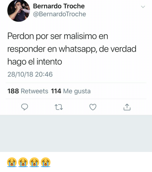 Whatsapp, Espanol, and International: Bernardo Troche  @BernardoTroche  Perdon por ser malisimo en  responder en whatsapp, de verdad  hago el intento  28/10/18 20:46  188 Retweets 114 Me gusta 😭😭😭😭