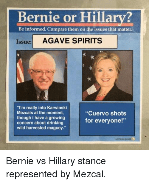 bernie or hillary be informed compare them on the issues 2703744 bernie or hillary? be informed compare them on the issues that