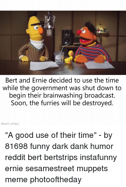 """Dank, Funny, and Meme: Bert and Ernie decided to use the time  while the government was shut down to  begin their brainwashing broadcast.  Soon, the furries will be destroyed  @bert strips """"A good use of their time"""" - by 81698 funny dark dank humor reddit bert bertstrips instafunny ernie sesamestreet muppets meme photooftheday"""