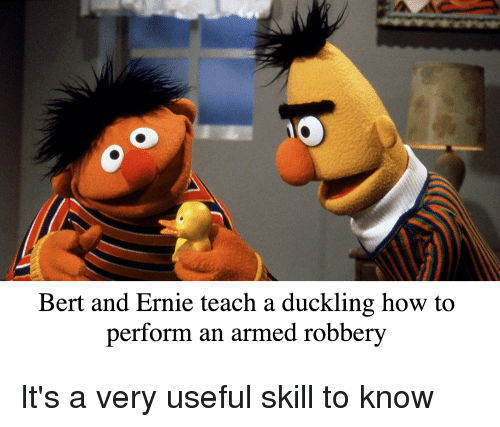 Bert And Ernie Teach A Duckling How To Perform An Armed