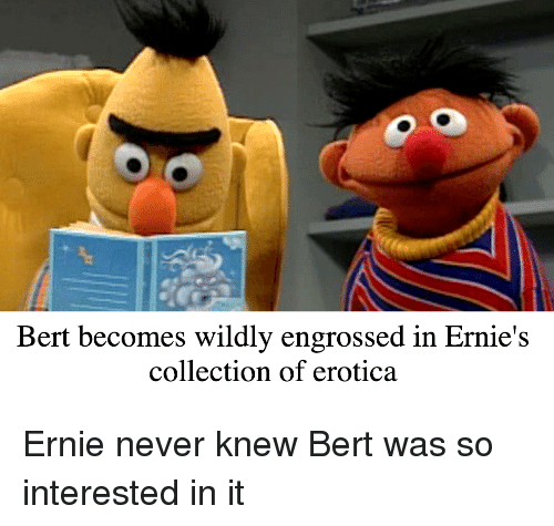 Bert Becomes Wildly Engrossed In Ernie S Collection Of