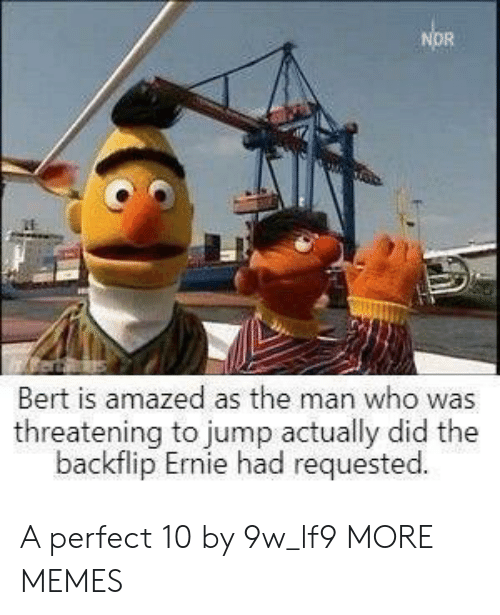 Dank, Memes, and Target: Bert is amazed as the man who was  threatening to jump actually did the  backflip Ernie had requested A perfect 10 by 9w_lf9 MORE MEMES