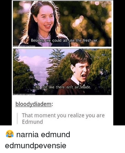 Fresh, Memes, and 🤖: Besidesst we could alnuse the-fresh air.  Its not like there isn't airinside.  ,'た.  bloodydiadem  That moment you realize you are  Edmund 😂 narnia edmund edmundpevensie