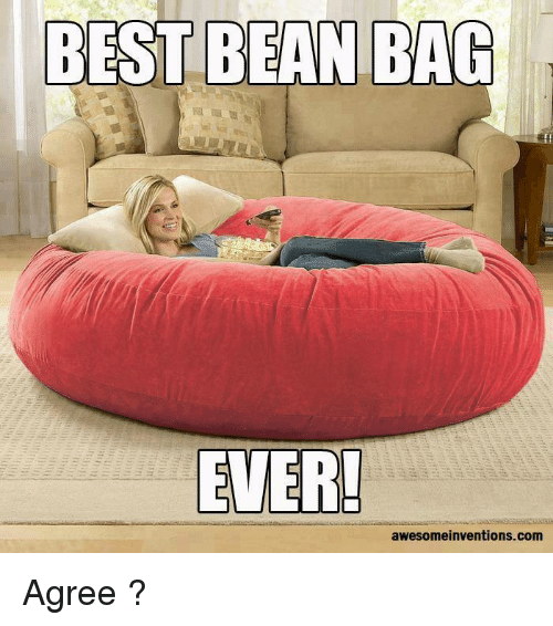 Funny Best And Com BEST BEAN BAG EVER Awesomeinventions Agree