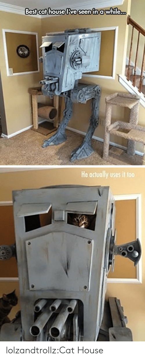 Tumblr, Best, and Blog: Best cat house lve seen in awhile...  He actually uses it too lolzandtrollz:Cat House