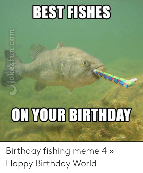 BEST FISHES ON YOUR BIRTHDAY Birthday Fishing Meme 4 » Happy ...