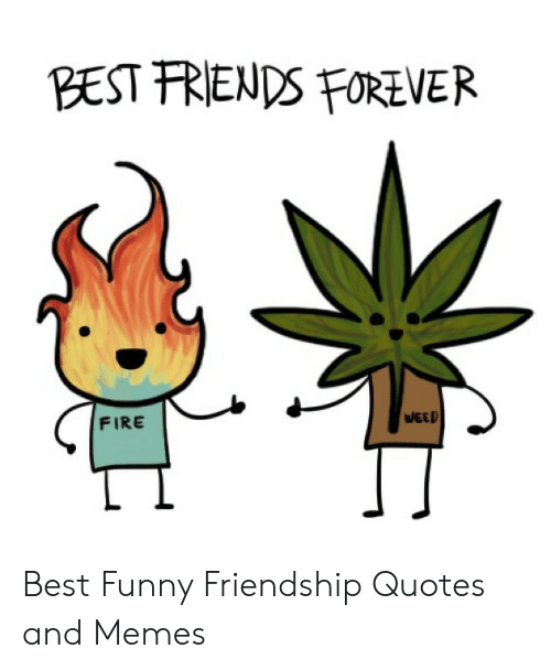 BEST FRIENDS FOREVER FIRE Best Funny Friendship Quotes and Memes