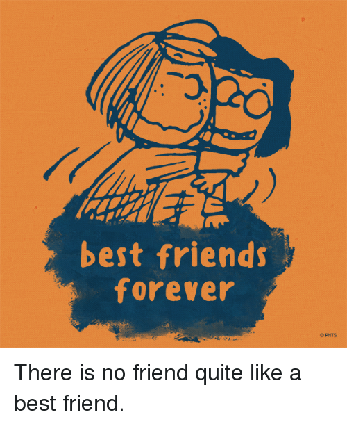 best friends forever there is no friend quite like a best friend