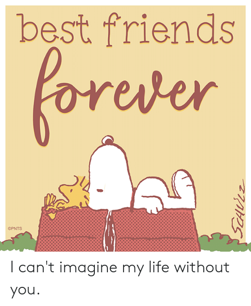 Friends, Life, and Memes: best friends  oreder  OPNTS I can't imagine my life without you.