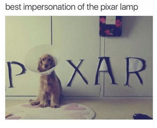 Memes, Pixar, and Best: best impersonation of the pixar lamp  XAR