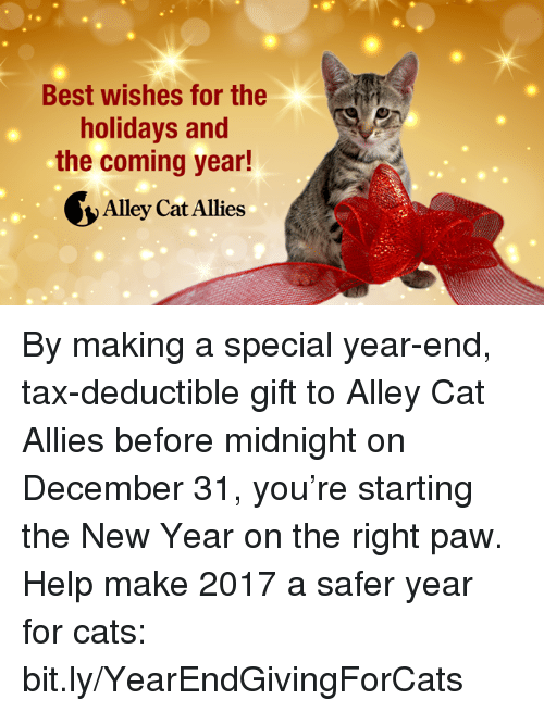 Best Wishes for the Holidays and the Coming Year! Alleycat Allies by ...