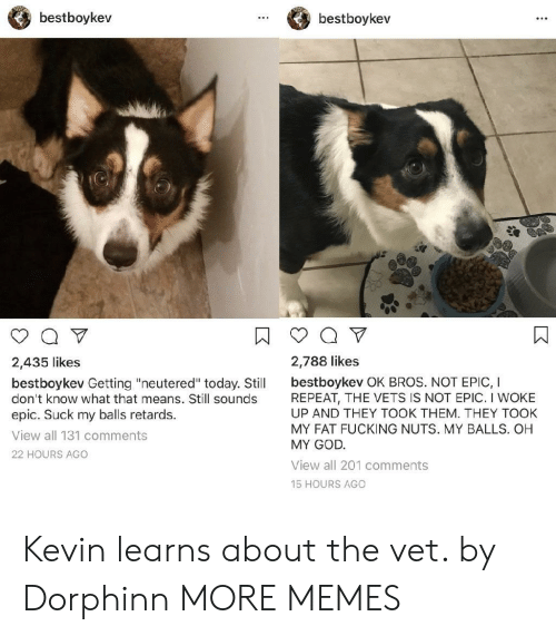 "Dank, Fucking, and God: bestboykev  bestboykev  2,435 likes  2,788 likes  bestboykev Getting ""neutered"" today. Stil bestboykev OK BROS. NOT EPIC, I  don't know what that means. Still sounds  epic. Suck my balls retards.  View all 131 comments  22 HOURS AGO  REPEAT, THE VETS IS NOT EPIC. I WOKE  UP AND THEY TOOK THEM. THEY TOOK  MY FAT FUCKING NUTS. MY BALLS. OH  MY GOD  View all 201 comments  15 HOURS AGO Kevin learns about the vet. by Dorphinn MORE MEMES"