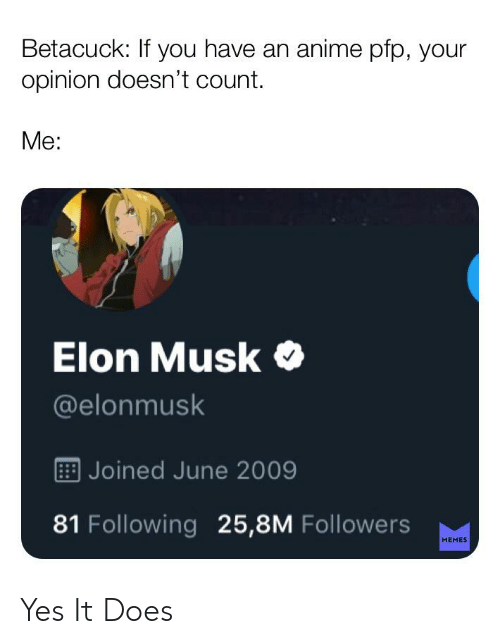 Betacuck If You Have An Anime Pfp Your Opinion Doesn T Count Me Elon