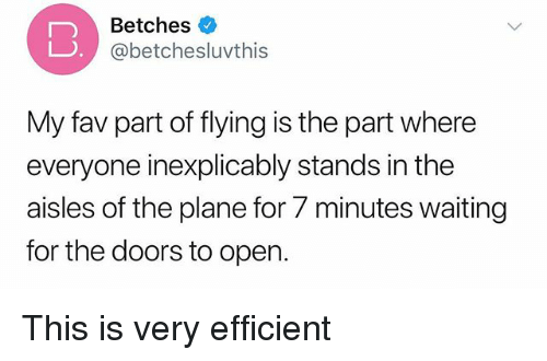Girl Memes, Waiting..., and The Doors: Betches  @betchesluvthis  My fav part of flying is the part where  everyone inexplicably stands in the  aisles of the plane for 7 minutes waiting  for the doors to open. This is very efficient