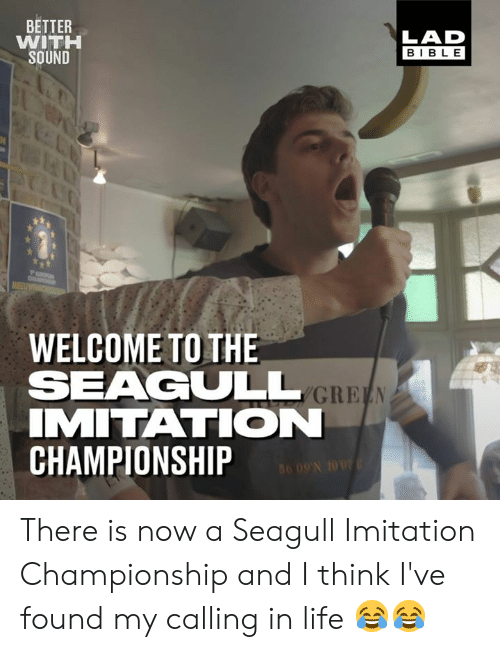 Dank, Life, and Bible: BETTER  WITH  SOUND  LAD  BIBLE  WELCOME TO THE  SEAGULL  IMITATION  CHAMPIONSHIP There is now a Seagull Imitation Championship and I think I've found my calling in life 😂😂
