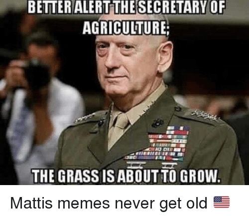 betteralert thesecretary of agriculture the grass isabout to grow mattis 12745773 ✅ 25 best memes about mattis memes mattis memes,Mattis Meme