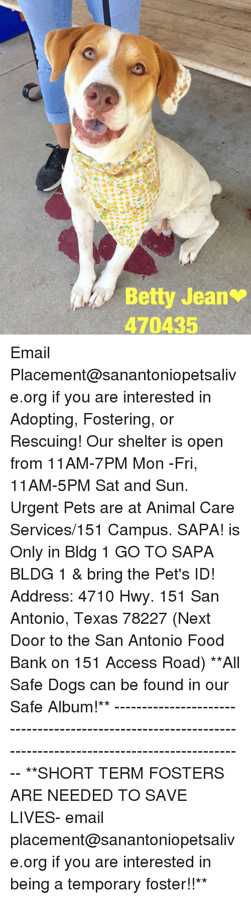 Dogs, Food, and Memes: Betty Jean  470435 Email Placement@sanantoniopetsalive.org if you are interested in Adopting, Fostering, or Rescuing!  Our shelter is open from 11AM-7PM Mon -Fri, 11AM-5PM Sat and Sun.  Urgent Pets are at Animal Care Services/151 Campus. SAPA! is Only in Bldg 1 GO TO SAPA BLDG 1 & bring the Pet's ID! Address: 4710 Hwy. 151 San Antonio, Texas 78227 (Next Door to the San Antonio Food Bank on 151 Access Road)  **All Safe Dogs can be found in our Safe Album!** ---------------------------------------------------------------------------------------------------------- **SHORT TERM FOSTERS ARE NEEDED TO SAVE LIVES- email placement@sanantoniopetsalive.org if you are interested in being a temporary foster!!**