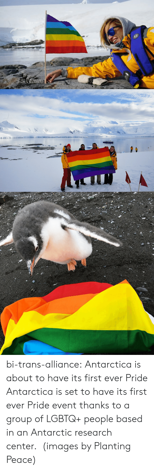 Lgbt, Tumblr, and Blog: bi-trans-alliance:   Antarctica is about to have its first ever Pride     Antarctica is set to have its first ever Pride event thanks to a group of LGBTQ+ people based in an Antarctic research center. (images by Planting Peace)