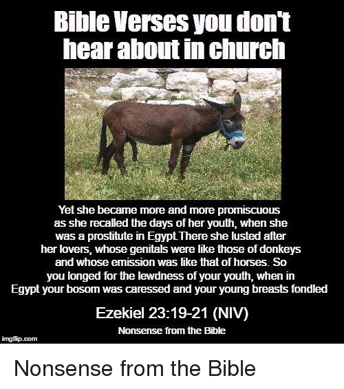 bible verse about donkey emissions